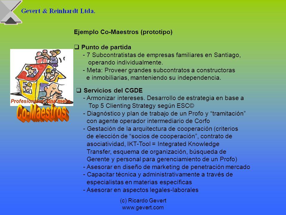 (c) Ricardo Gevert www.gevert.com Profesionales. Una meta. Ejemplo Co-Maestros (prototipo) Punto de partida - 7 Subcontratistas de empresas familiares