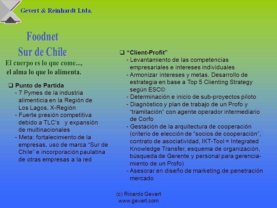 (c) Ricardo Gevert www.gevert.com Punto de Partida - 7 Pymes de la industria alimenticia en la Región de Los Lagos, X-Región - Fuerte presión competit