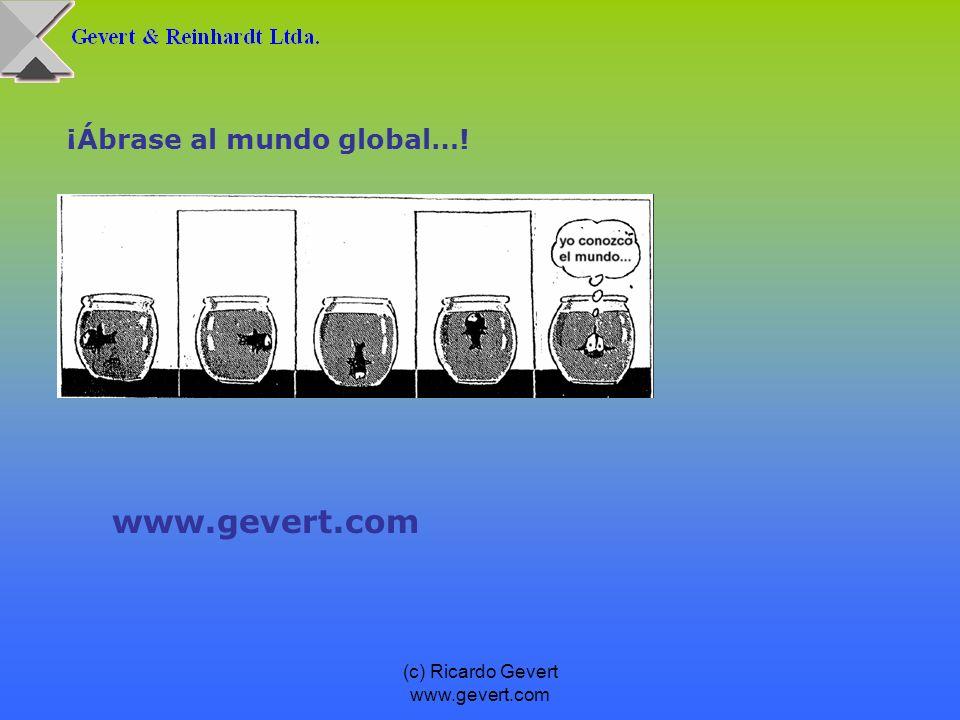 (c) Ricardo Gevert www.gevert.com ¡Ábrase al mundo global…! www.gevert.com
