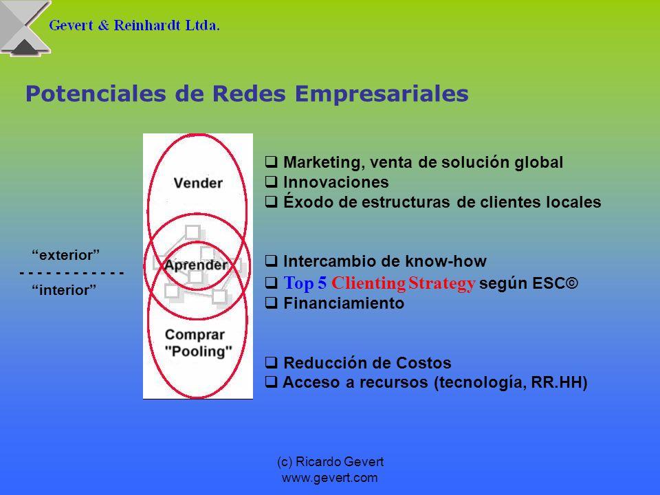 (c) Ricardo Gevert www.gevert.com Potenciales de Redes Empresariales exterior - - - - - - interior Marketing, venta de solución global Innovaciones Éx