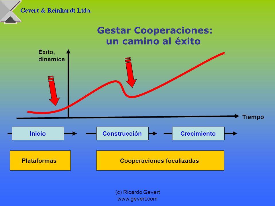 (c) Ricardo Gevert www.gevert.com Gestar Cooperaciones: un camino al éxito Éxito, dinámica Tiempo InicioConstrucciónCrecimiento PlataformasCooperacion