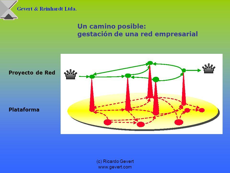 (c) Ricardo Gevert www.gevert.com Auditor: - Revisor interno y externo - Asesoría y Evaluación financiera, laboral, etc.