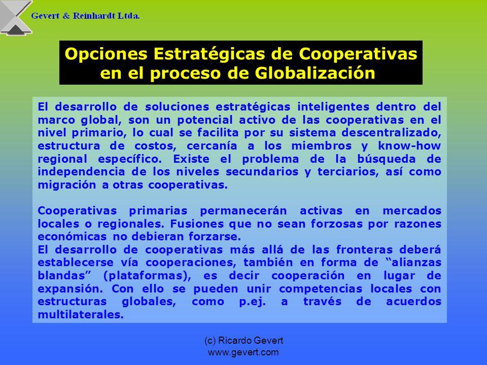 (c) Ricardo Gevert www.gevert.com El desarrollo de soluciones estratégicas inteligentes dentro del marco global, son un potencial activo de las cooper