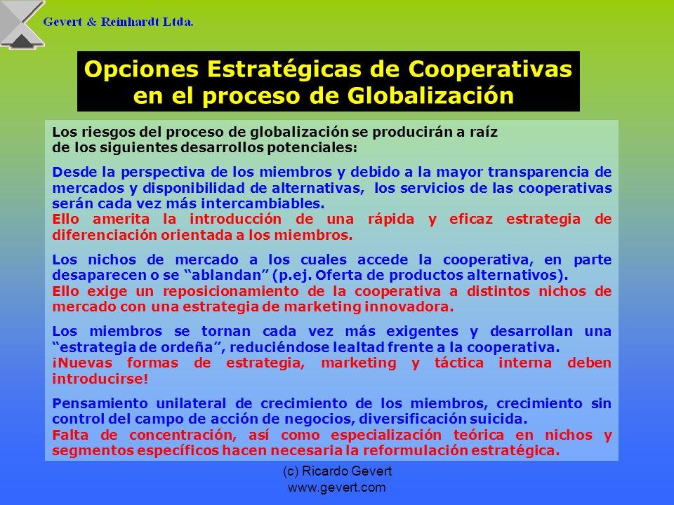 (c) Ricardo Gevert www.gevert.com Los riesgos del proceso de globalización se producirán a raíz de los siguientes desarrollos potenciales: Desde la pe