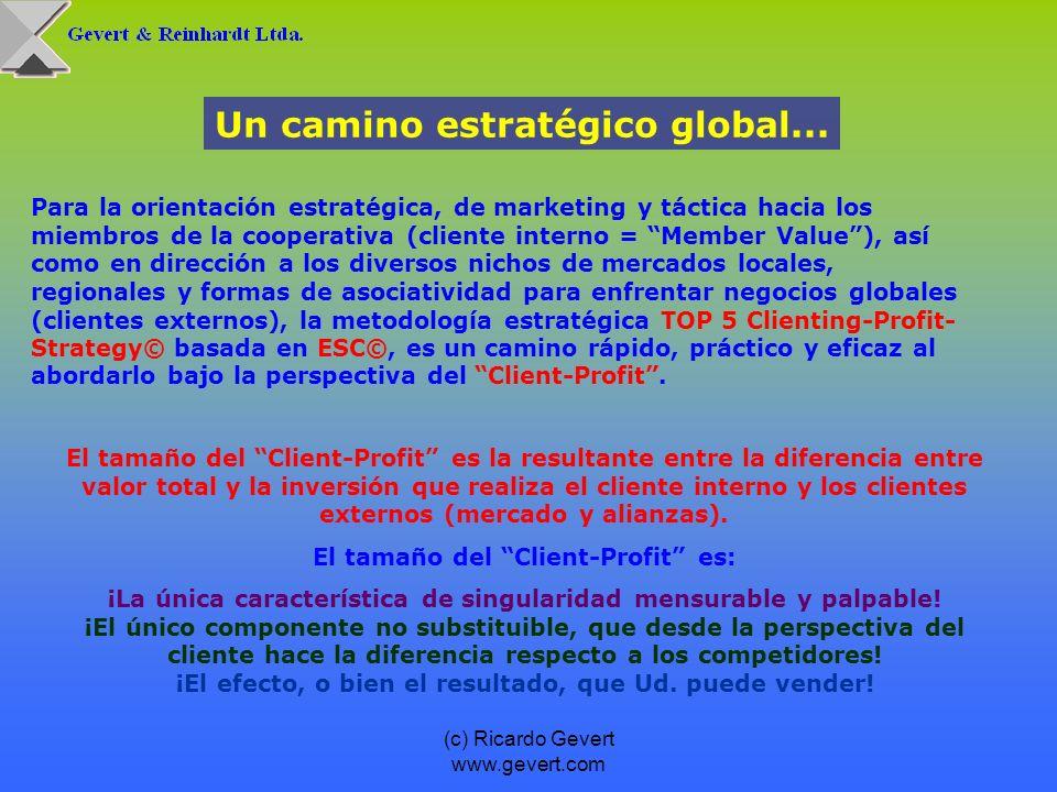 (c) Ricardo Gevert www.gevert.com Un camino estratégico global... Para la orientación estratégica, de marketing y táctica hacia los miembros de la coo