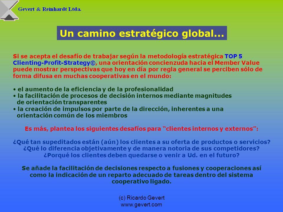 (c) Ricardo Gevert www.gevert.com Si se acepta el desafío de trabajar según la metodología estratégica TOP 5 Clienting-Profit-Strategy©, una orientaci
