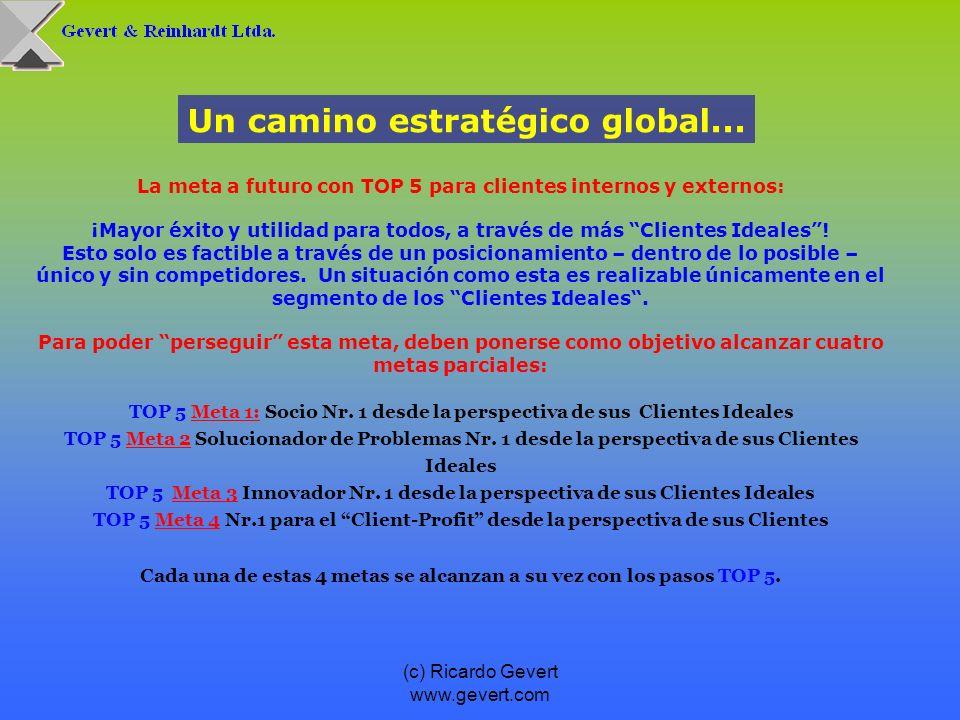 (c) Ricardo Gevert www.gevert.com Un camino estratégico global... La meta a futuro con TOP 5 para clientes internos y externos: ¡Mayor éxito y utilida
