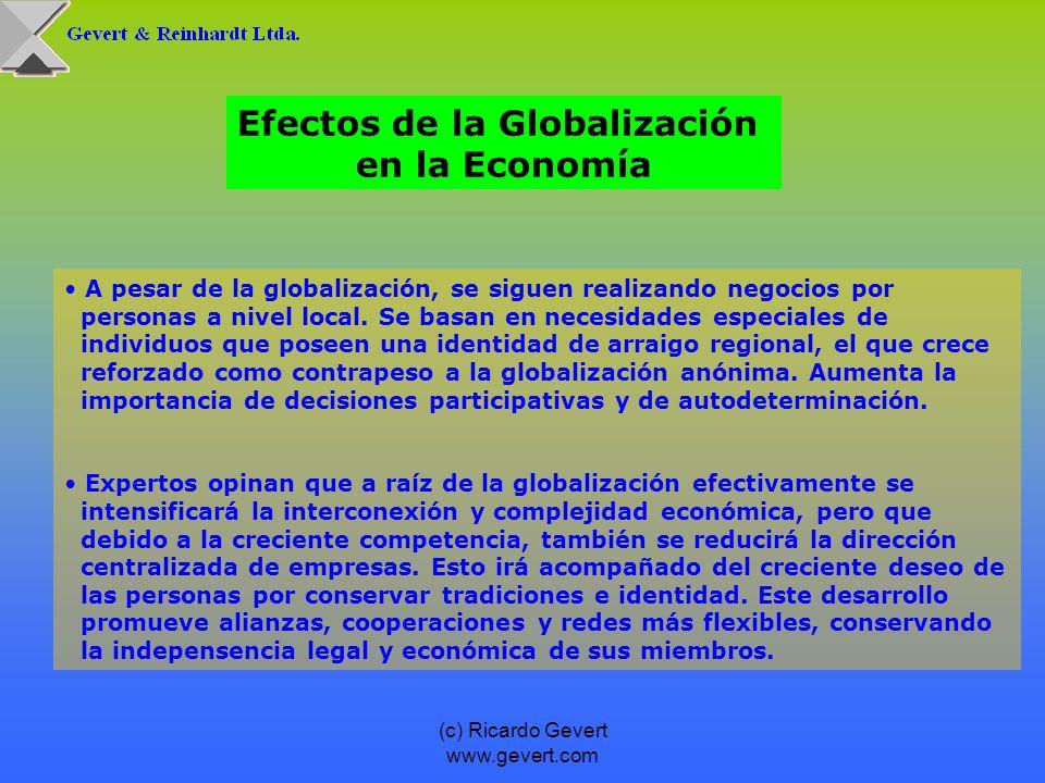 (c) Ricardo Gevert www.gevert.com Factores medulares de éxito de una economía globalizada son flexibilidad, capacidad de reacción y toma de decisión rápidos, eliminación de estructuras burocráticas y concentración en las propias fortalezas en función de grupos objetivos más delimitados.