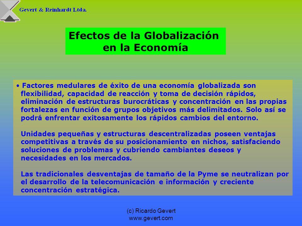 (c) Ricardo Gevert www.gevert.com Factores medulares de éxito de una economía globalizada son flexibilidad, capacidad de reacción y toma de decisión r