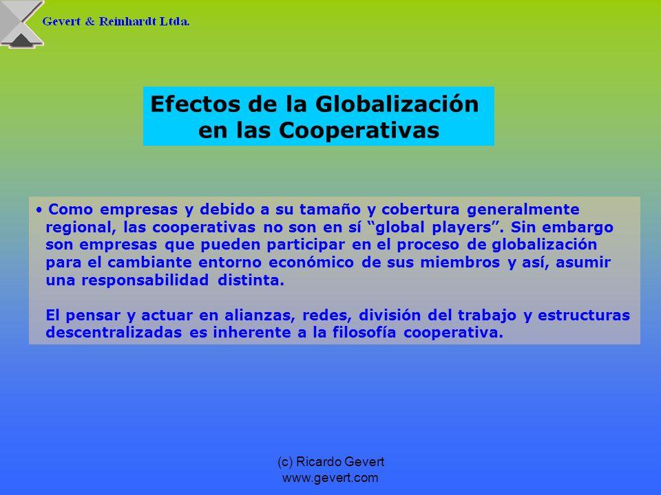 (c) Ricardo Gevert www.gevert.com Como empresas y debido a su tamaño y cobertura generalmente regional, las cooperativas no son en sí global players.
