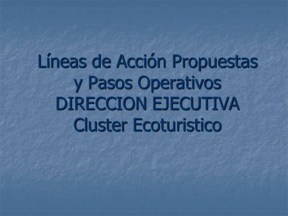 Líneas de Acción Propuestas y Pasos Operativos DIRECCION EJECUTIVA Cluster Ecoturistico