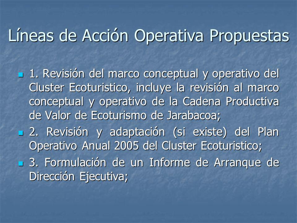 Líneas de Acción Operativa Propuestas 1.