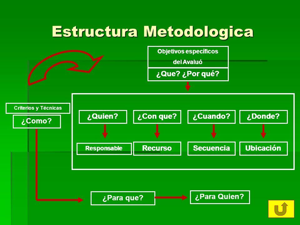 Estructura Metodologica ¿Quien?¿Con que?¿Cuando?¿Donde.