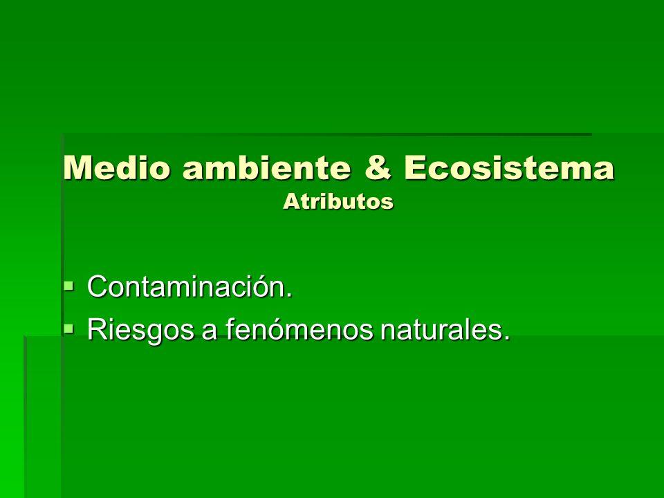 Medio ambiente & Ecosistema Atributos Contaminación. Contaminación. Riesgos a fenómenos naturales. Riesgos a fenómenos naturales.