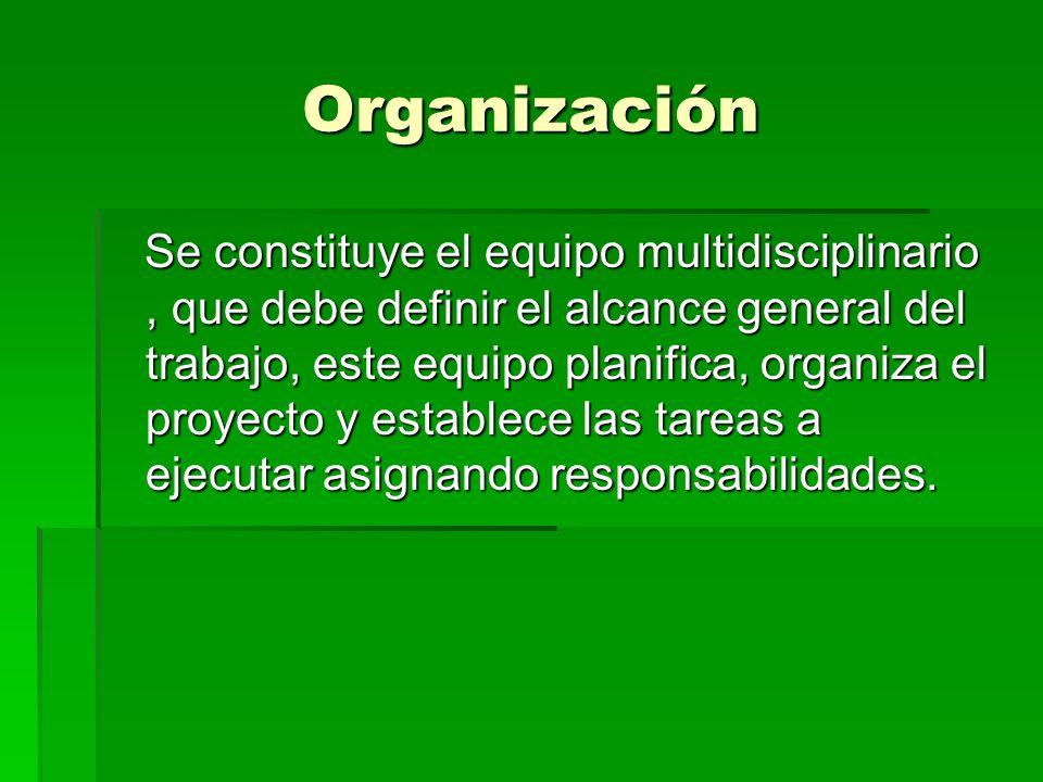 Organización Se constituye el equipo multidisciplinario, que debe definir el alcance general del trabajo, este equipo planifica, organiza el proyecto y establece las tareas a ejecutar asignando responsabilidades.