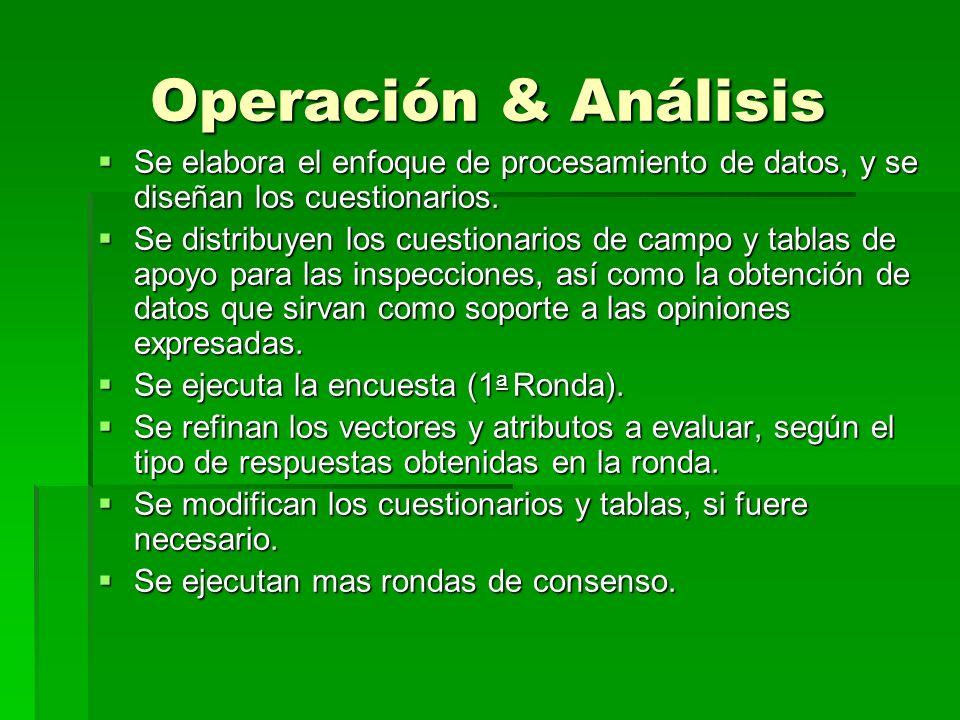 Operación & Análisis Se elabora el enfoque de procesamiento de datos, y se diseñan los cuestionarios. Se elabora el enfoque de procesamiento de datos,