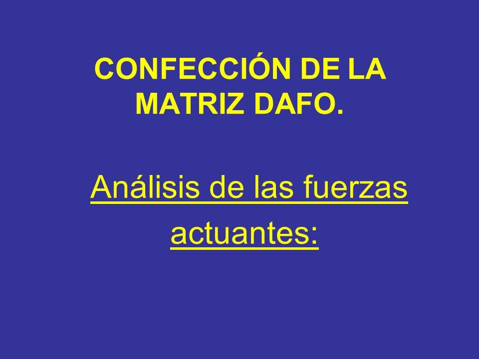 CONFECCIÓN DE LA MATRIZ DAFO. Análisis de las fuerzas actuantes: