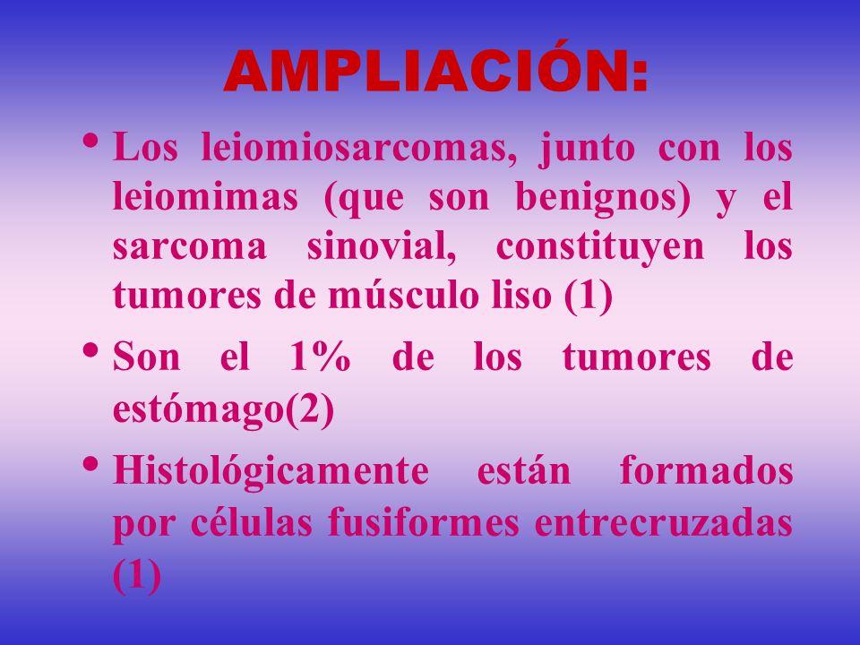 AMPLIACIÓN: Los leiomiosarcomas, junto con los leiomimas (que son benignos) y el sarcoma sinovial, constituyen los tumores de músculo liso (1) Son el