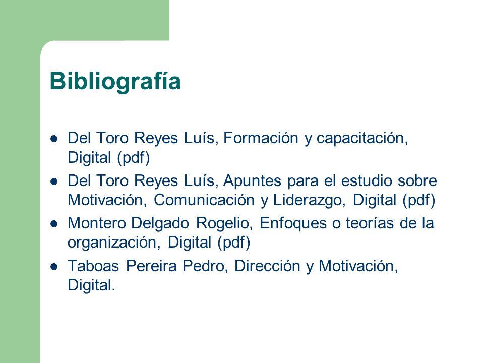 Bibliografía Del Toro Reyes Luís, Formación y capacitación, Digital (pdf) Del Toro Reyes Luís, Apuntes para el estudio sobre Motivación, Comunicación