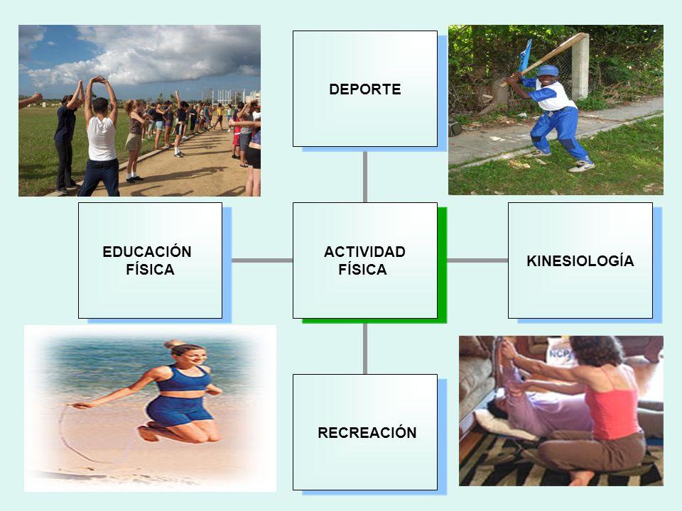 Beneficios de la Actividad Física Nivel Físico Nivel Psíquico Nivel Socio-afectivo