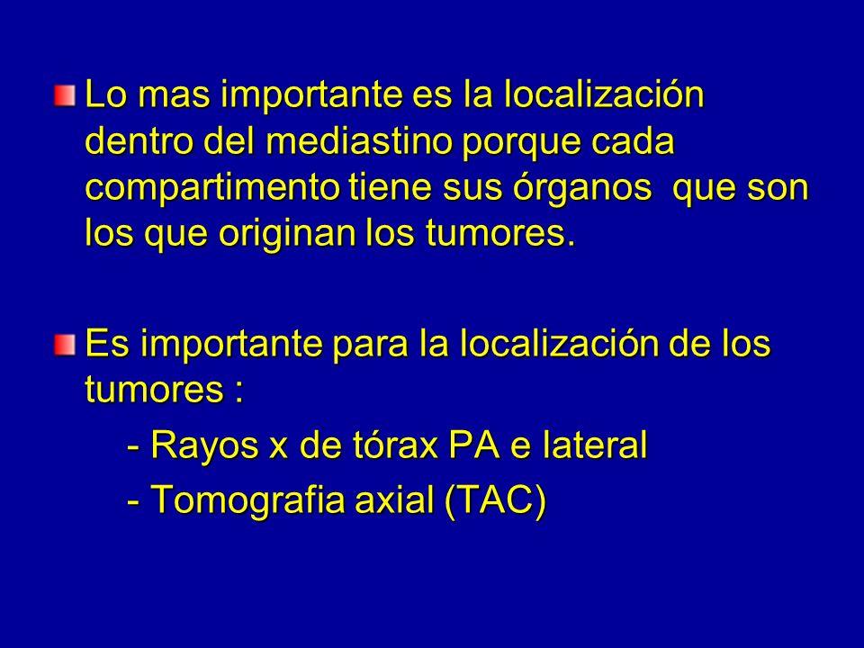 Lo mas importante es la localización dentro del mediastino porque cada compartimento tiene sus órganos que son los que originan los tumores. Es import
