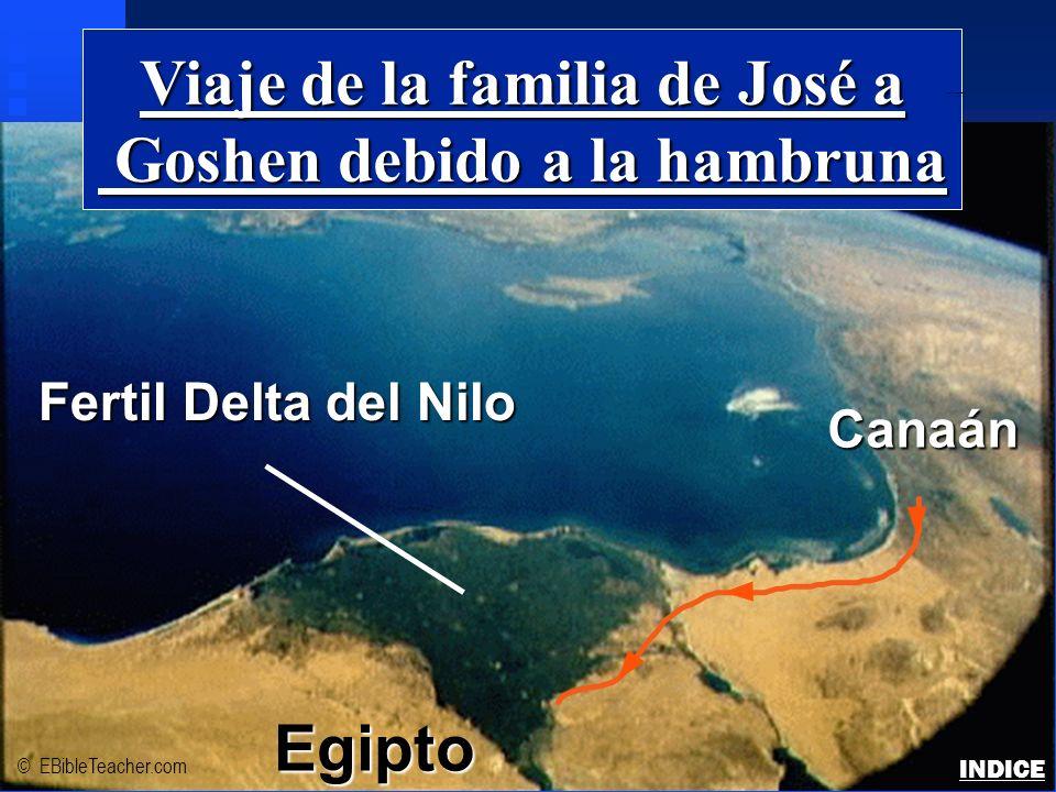 Viaje de la familia de José a Goshen debido a la hambruna Goshen debido a la hambruna Fertil Delta del Nilo Egipto Canaán © EBibleTeacher.com Josephs