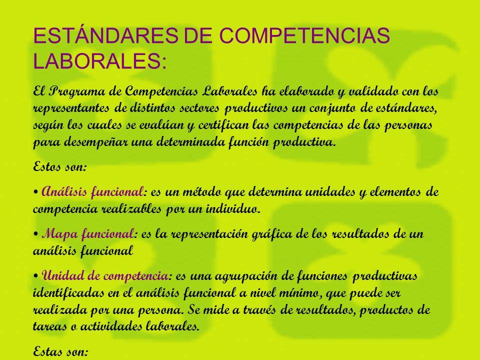 OBJETIVOS: El programa creó un Sistema Nacional de Competencias Laborales que define estándares de referencia para medir habilidades.