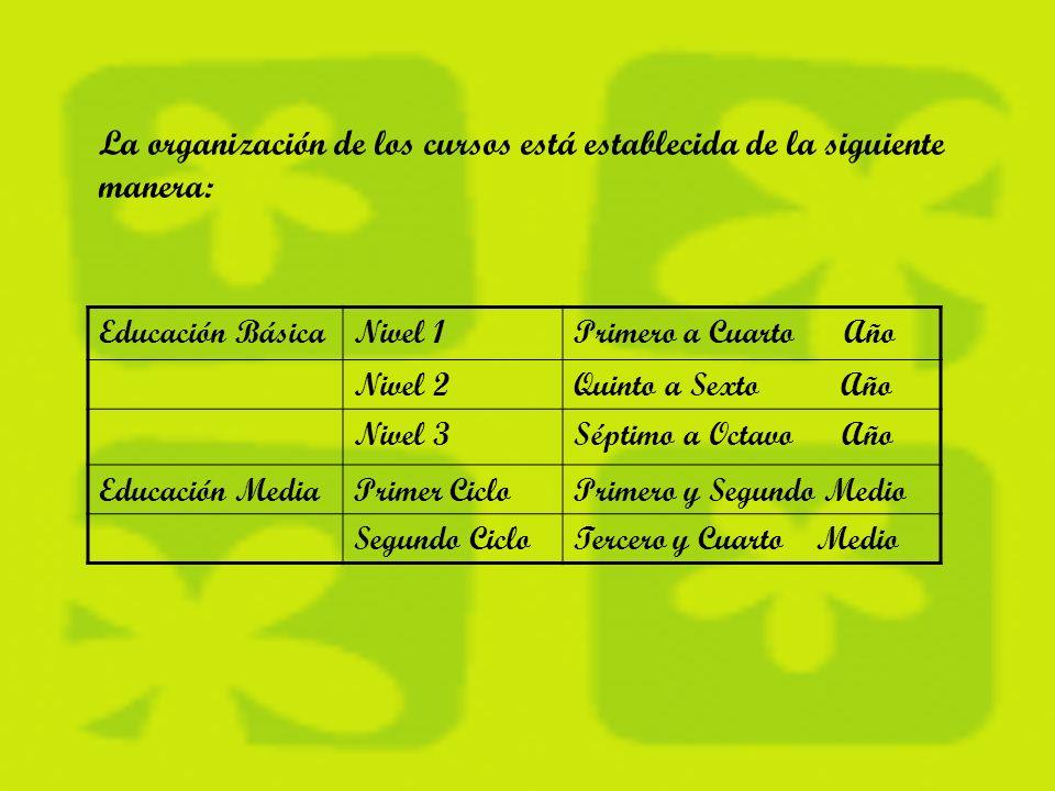 SERVICIO EDUCATIVO: Este programa certifica estudios de 4º 6º y 8º en enseñanza básica, y 1º y 2º ciclo en educación media.