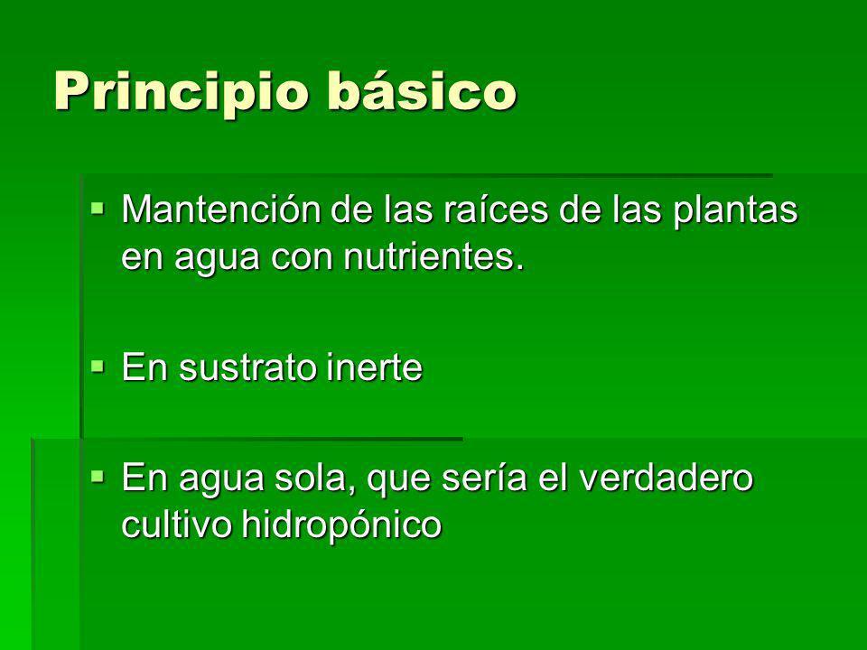 Principio básico Mantención de las raíces de las plantas en agua con nutrientes. Mantención de las raíces de las plantas en agua con nutrientes. En su