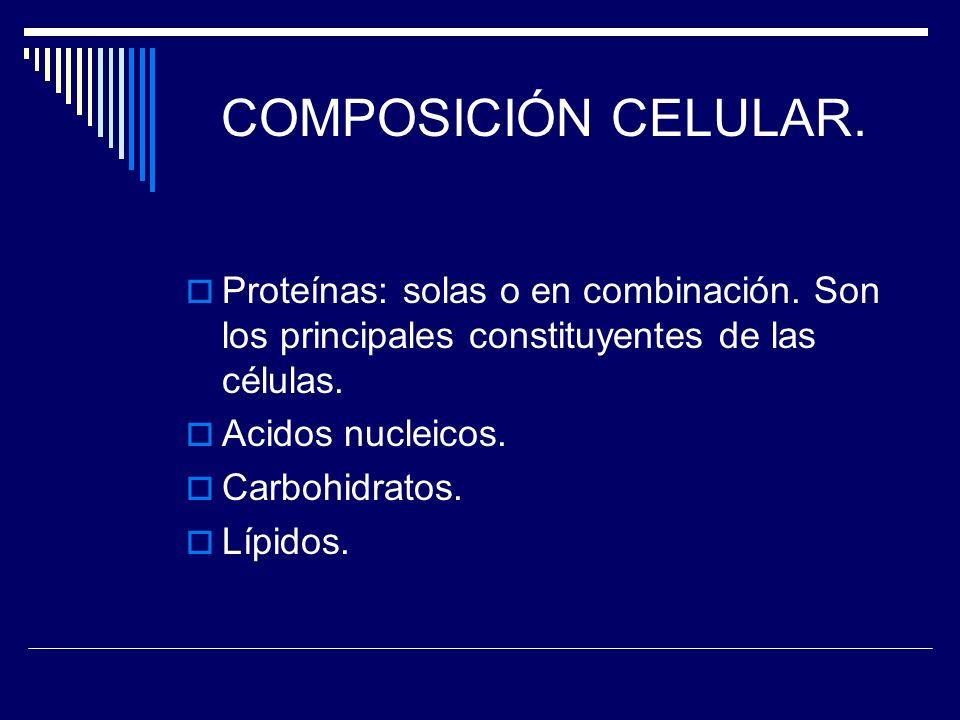 COMPOSICIÓN CELULAR. Proteínas: solas o en combinación. Son los principales constituyentes de las células. Acidos nucleicos. Carbohidratos. Lípidos.
