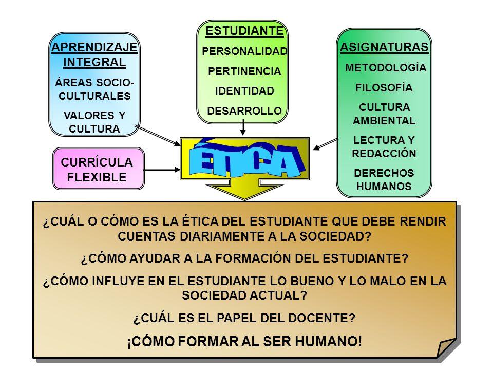 CURRÍCULA FLEXIBLE APRENDIZAJE INTEGRAL ÁREAS SOCIO- CULTURALES VALORES Y CULTURA ASIGNATURAS METODOLOGÍA FILOSOFÍA CULTURA AMBIENTAL LECTURA Y REDACC