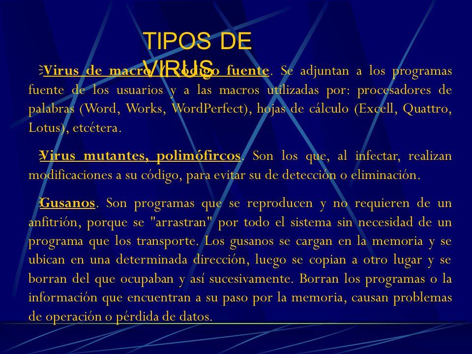 TIPOS DE VIRUS Virus de macro / código fuente. Se adjuntan a los programas fuente de los usuarios y a las macros utilizadas por: procesadores de palab