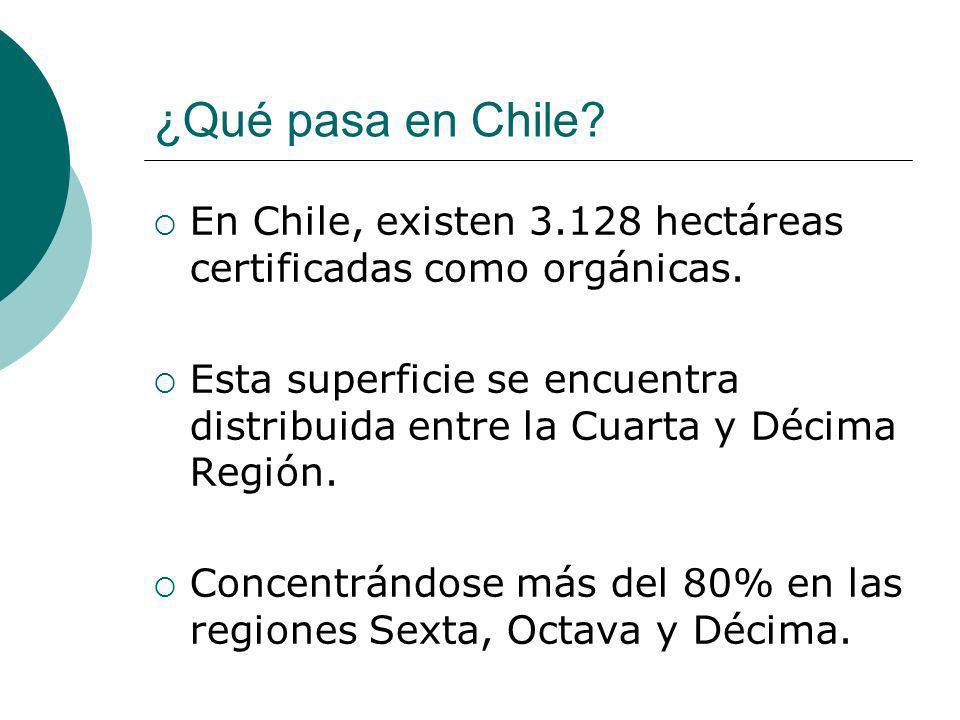 ¿Qué pasa en Chile? En Chile, existen 3.128 hectáreas certificadas como orgánicas. Esta superficie se encuentra distribuida entre la Cuarta y Décima R