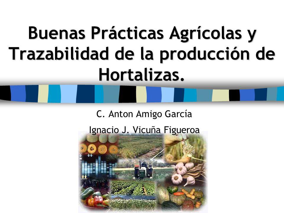 Buenas Prácticas Agrícolas y Trazabilidad de la producción de Hortalizas. C. Anton Amigo García Ignacio J. Vicuña Figueroa
