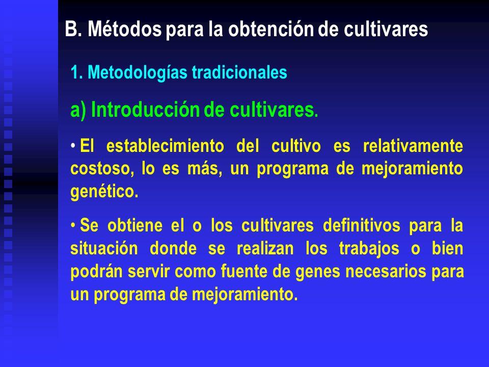 B. Métodos para la obtención de cultivares 1. Metodologías tradicionales a) Introducción de cultivares. El establecimiento del cultivo es relativament