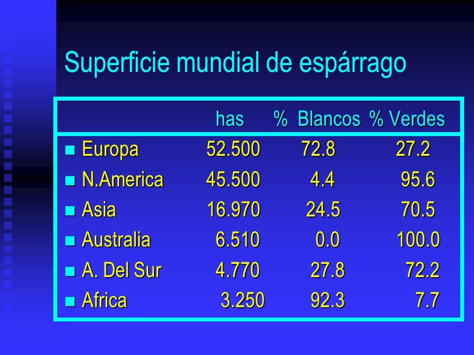 Superficie mundial de espárrago has % Blancos % Verdes has % Blancos % Verdes n Europa52.50072.827.2 n N.America45.500 4.4 95.6 n Asia16.970 24.5 70.5