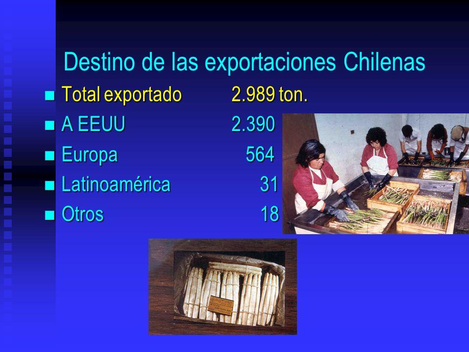 Destino de las exportaciones Chilenas n Total exportado2.989 ton. n A EEUU2.390 n Europa 564 n Latinoamérica 31 n Otros 18