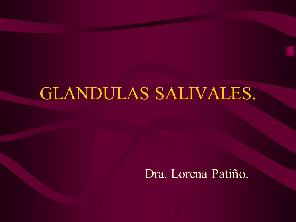 GENERALIDADES.Las glándulas salivales son exocrinas.