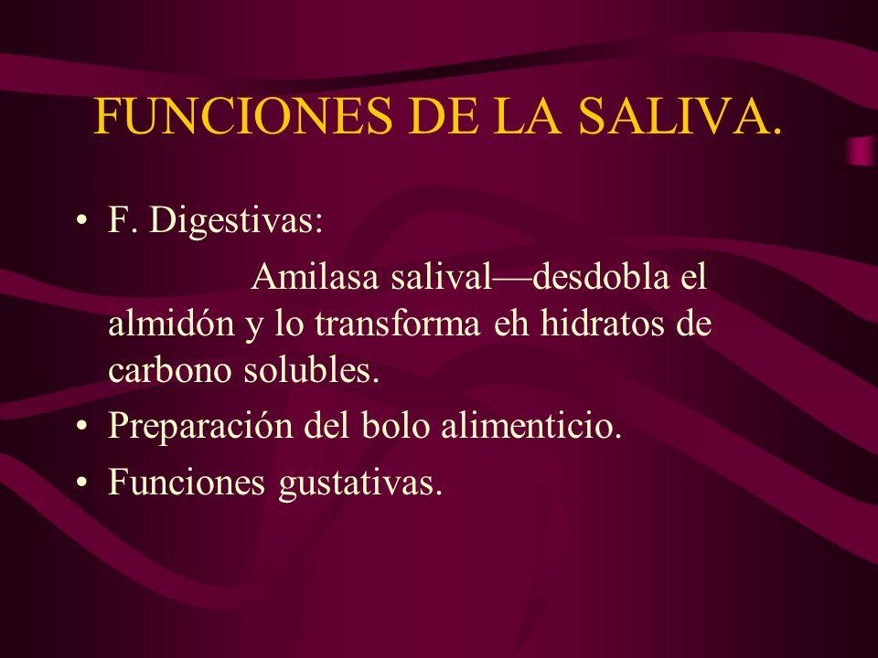 FUNCIONES DE LA SALIVA. F. Digestivas: Amilasa salivaldesdobla el almidón y lo transforma eh hidratos de carbono solubles. Preparación del bolo alimen