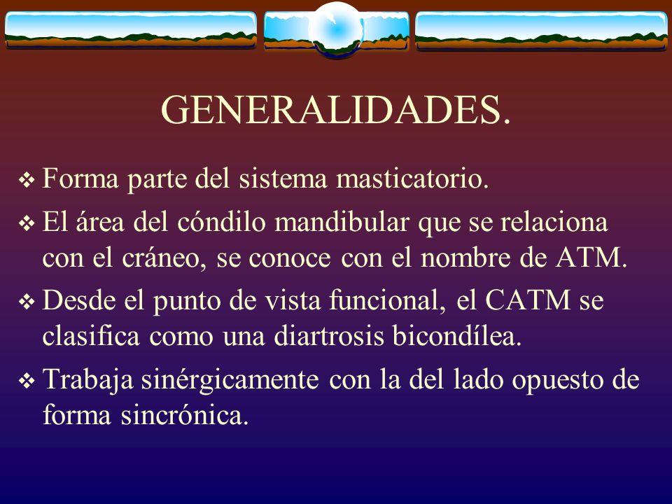 GENERALIDADES.Forma parte del sistema masticatorio.