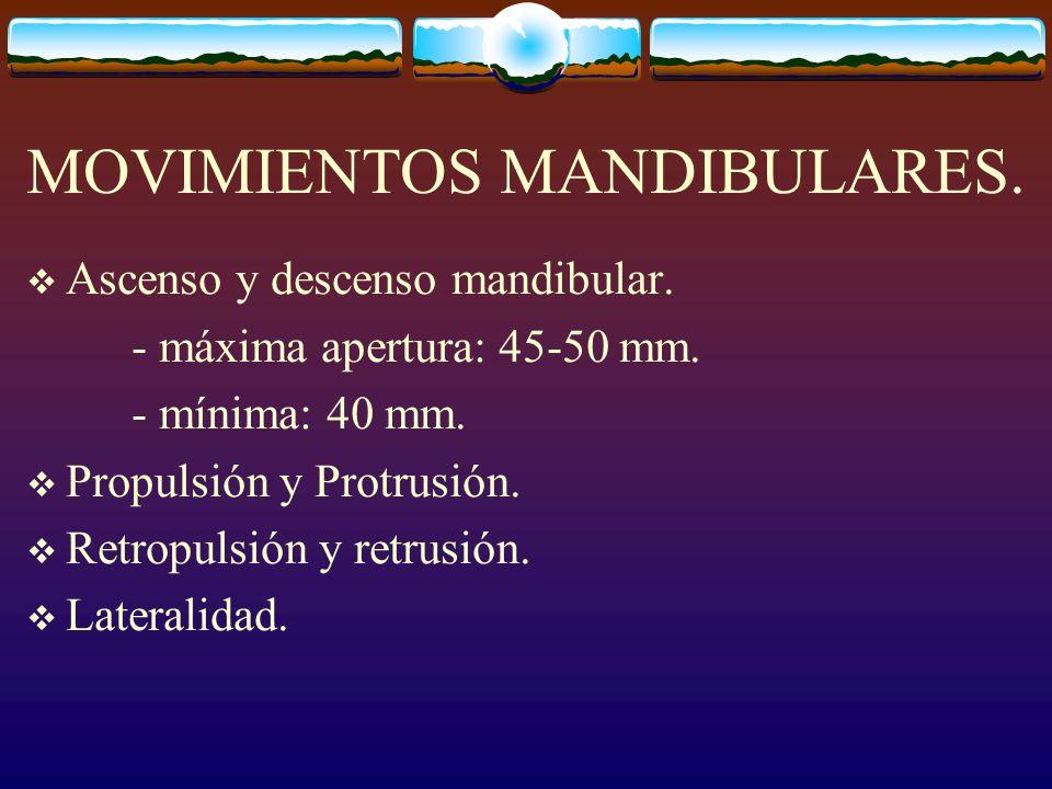 MOVIMIENTOS MANDIBULARES. Ascenso y descenso mandibular. - máxima apertura: 45-50 mm. - mínima: 40 mm. Propulsión y Protrusión. Retropulsión y retrusi