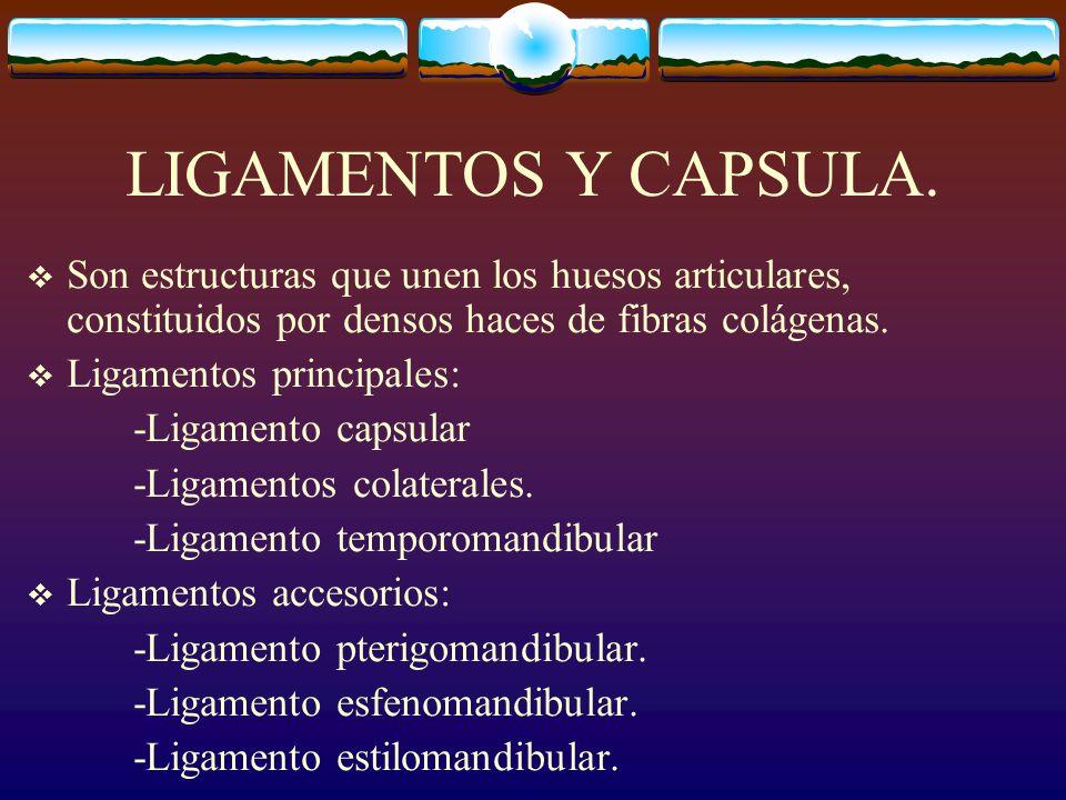 LIGAMENTOS Y CAPSULA.