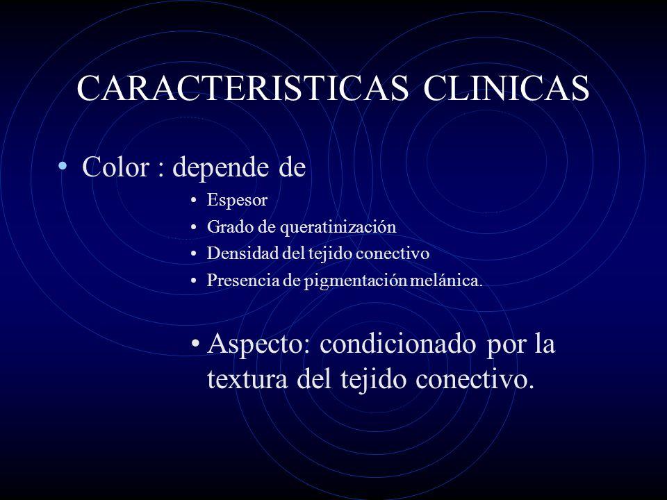 CARACTERISTICAS CLINICAS Color : depende de Espesor Grado de queratinización Densidad del tejido conectivo Presencia de pigmentación melánica. Aspecto