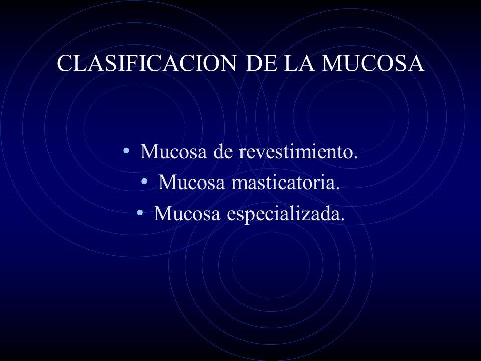 CLASIFICACION DE LA MUCOSA Mucosa de revestimiento. Mucosa masticatoria. Mucosa especializada.