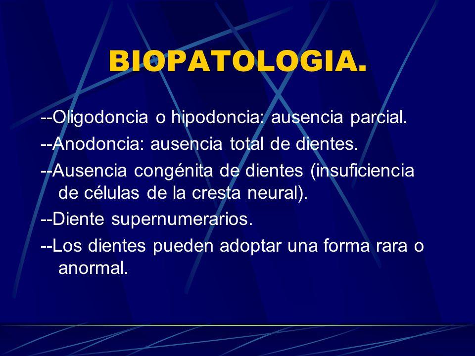 BIOPATOLOGIA.--Oligodoncia o hipodoncia: ausencia parcial.