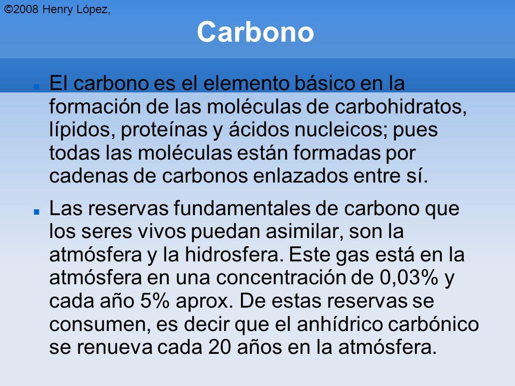 Carbono El carbono es el elemento básico en la formación de las moléculas de carbohidratos, lípidos, proteínas y ácidos nucleicos; pues todas las moléculas están formadas por cadenas de carbonos enlazados entre sí.