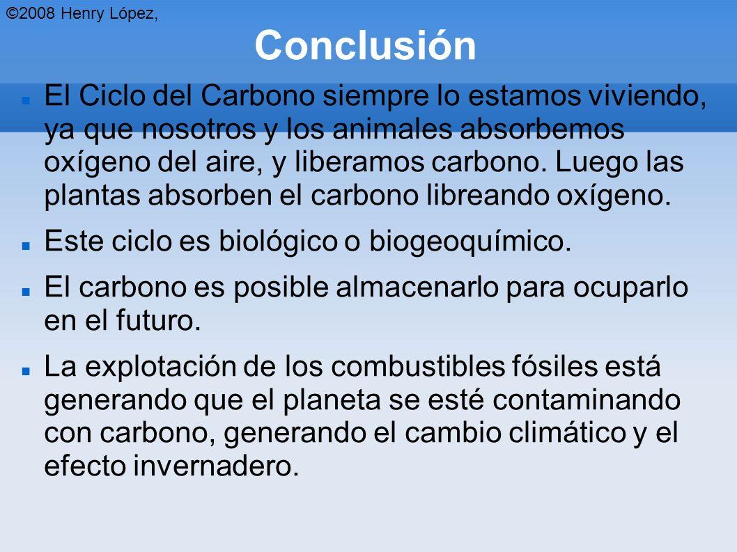 Conclusión El Ciclo del Carbono siempre lo estamos viviendo, ya que nosotros y los animales absorbemos oxígeno del aire, y liberamos carbono.