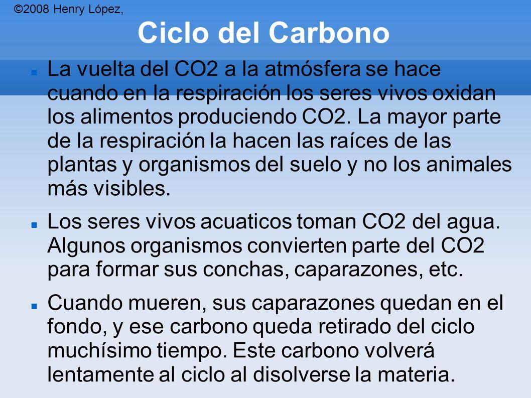 Ciclo del Carbono La vuelta del CO2 a la atmósfera se hace cuando en la respiración los seres vivos oxidan los alimentos produciendo CO2.