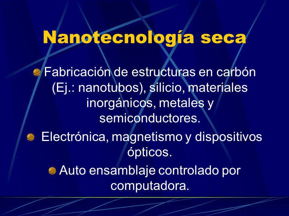 Nanotecnología seca Fabricación de estructuras en carbón (Ej.: nanotubos), silicio, materiales inorgánicos, metales y semiconductores. Electrónica, ma