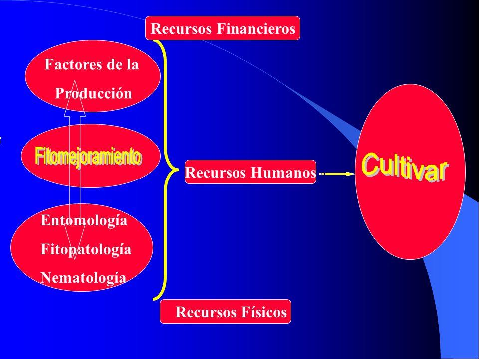 Factores de la Producción Entomología Fitopatología Nematología Recursos Físicos Recursos Financieros Recursos Humanos
